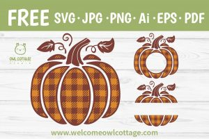 FREE Plaid Pumpkin svg Cut File for DIY Crafting Projects